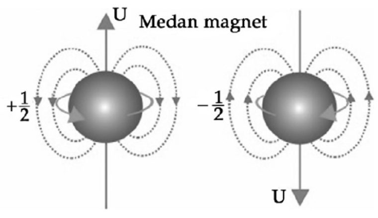 Kuantum Magnetik