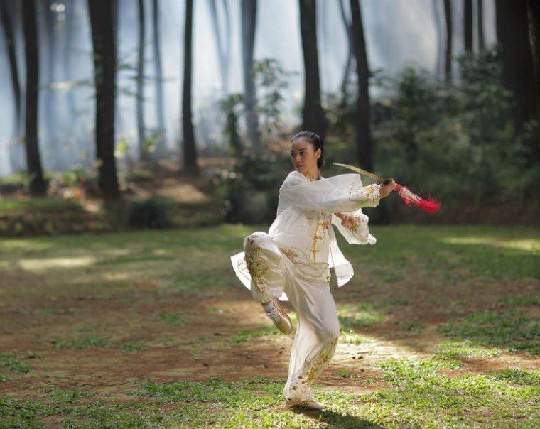 Jenis - Jenis Gerakan Wushu
