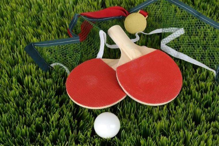 Peralatan Tenis Meja