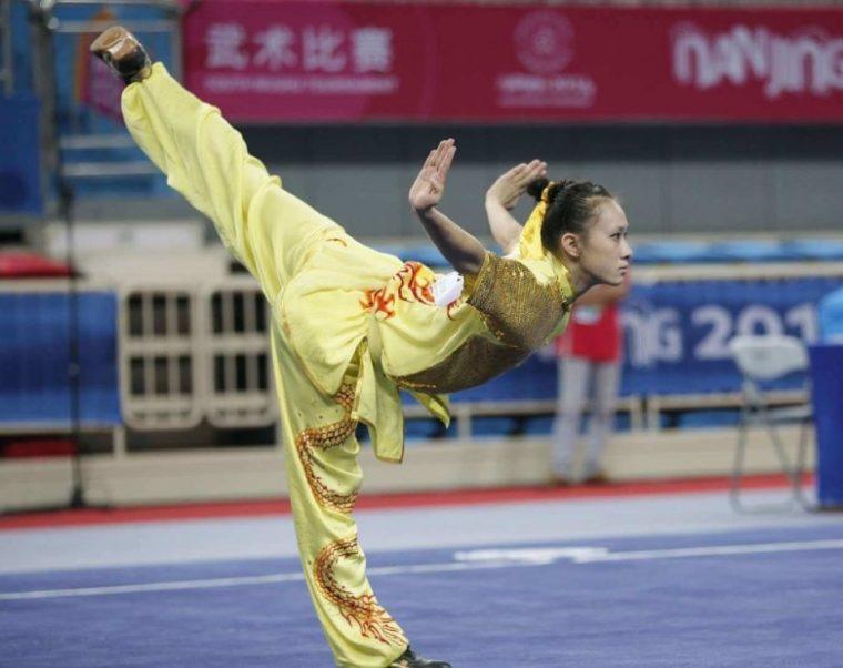 Teknik Dasar Wushu