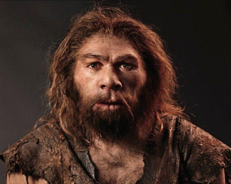 Homo Sapiens Sejarah Ciri Jenis Kehidupan Peninggalannya