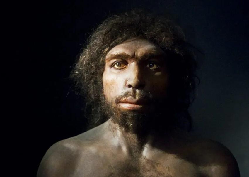 Homo sapiens és paraziták