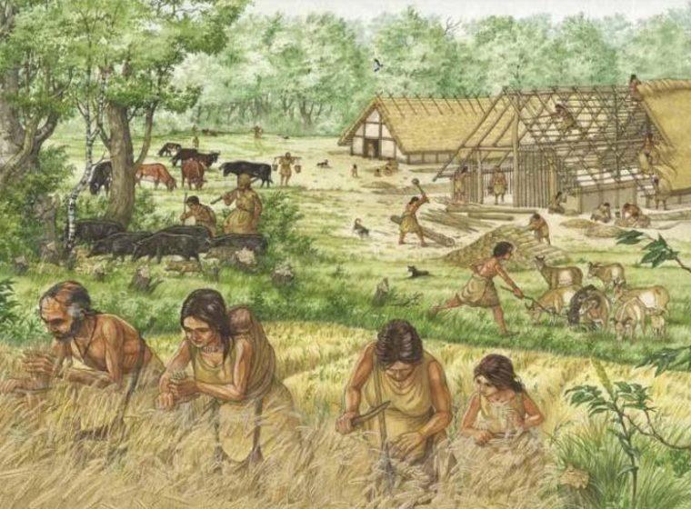 Masa Food Producing Zaman Neolitikum