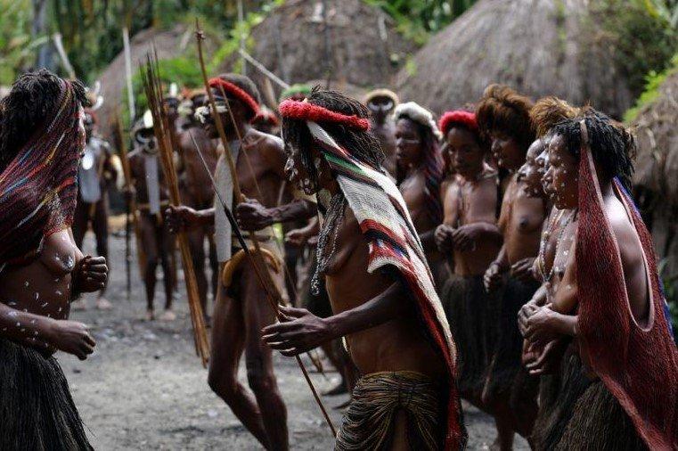 Pengertian Ras Melanesoid