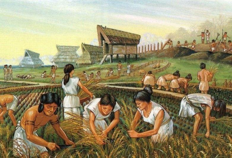 Pengertian Zaman Neolitikum