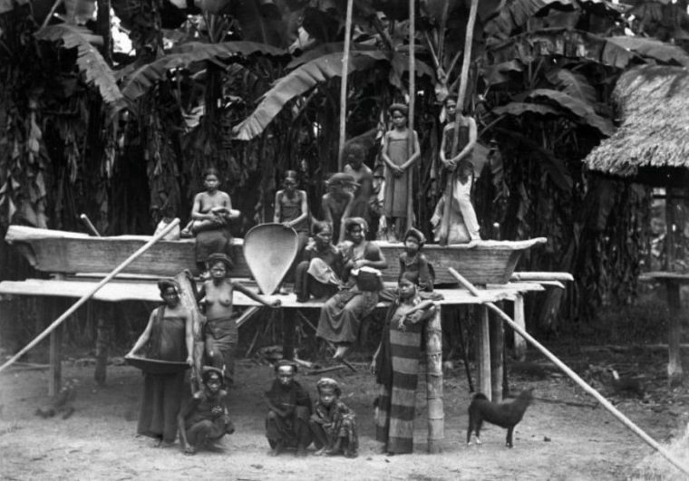 Ras Proto Melayu