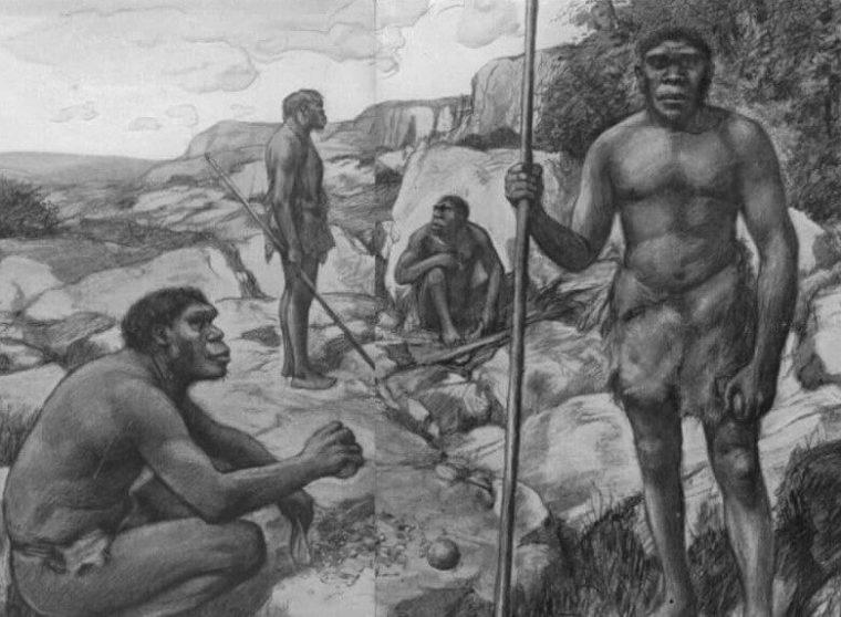 Sejarah Homo Sapiens