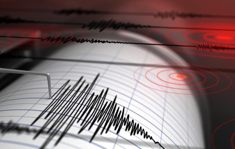 gambar seismograf