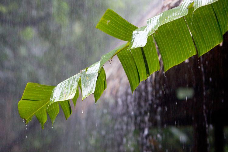 Foto Doa Ketika Hujan