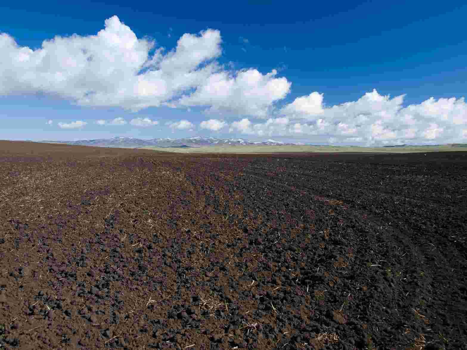 gambar faktor pembentukan tanah