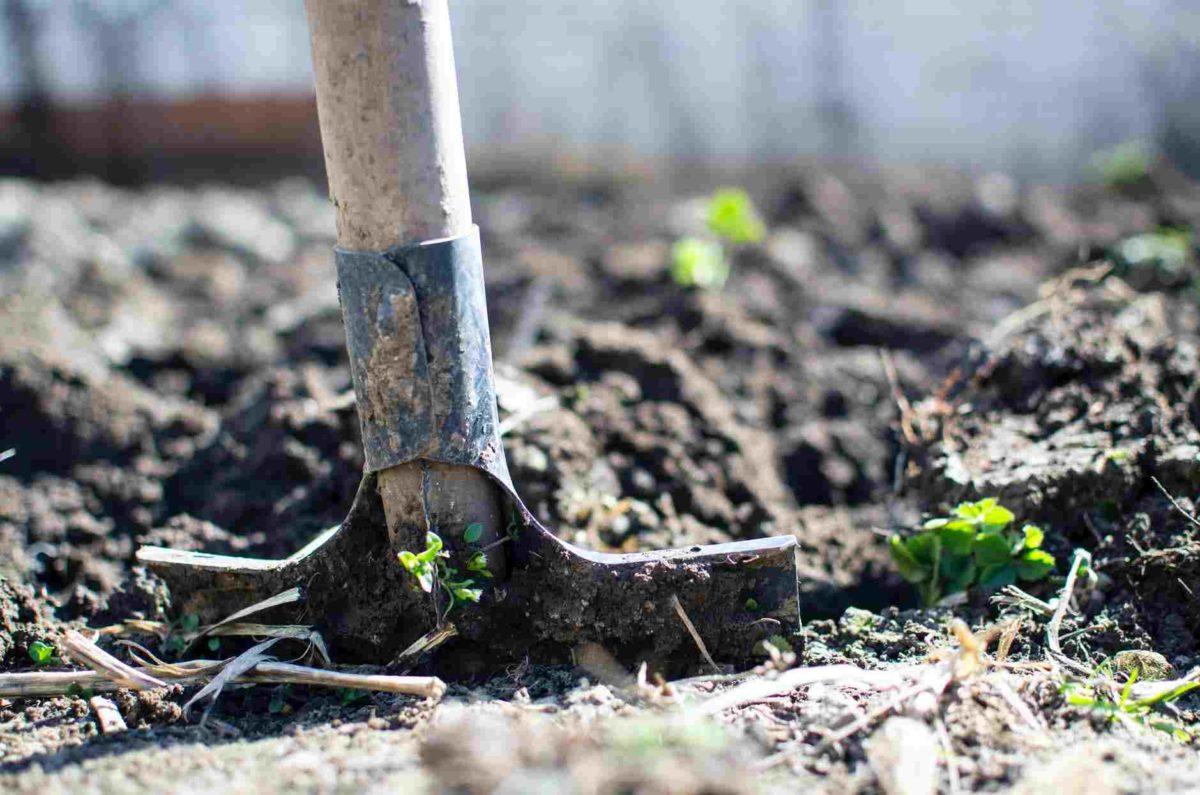 manfaat tanah