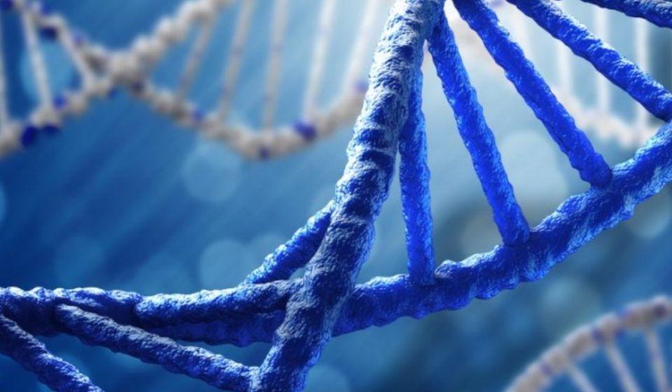perbedaan dna dan rna Tabel Perbedaan DNA dan RNA