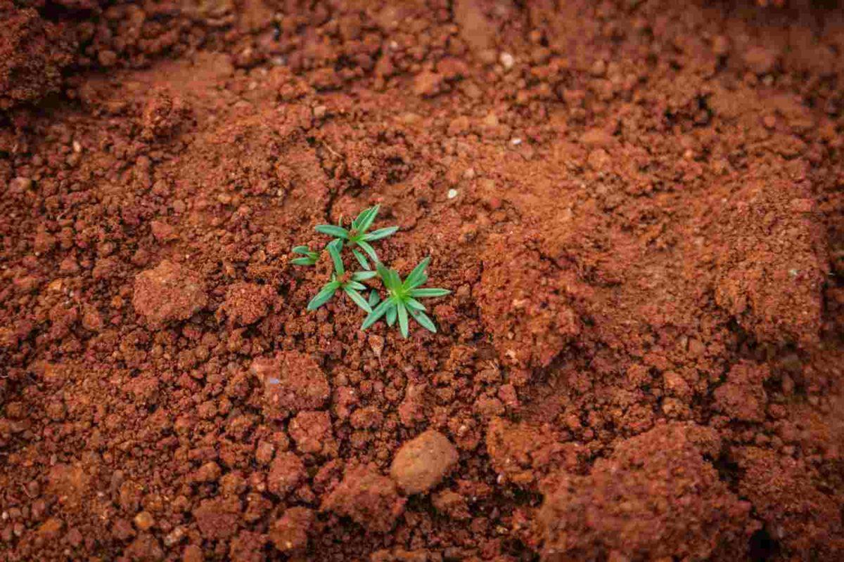 gambar sifat-sifat tanah