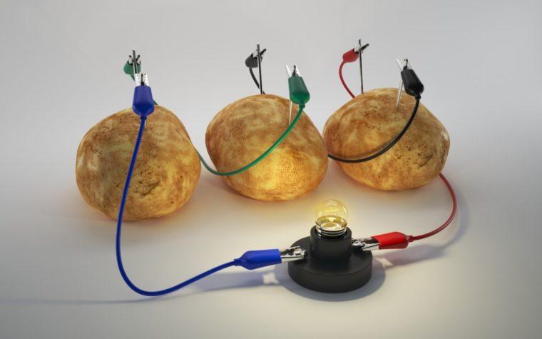 Cara Membuat Baterai Alami dari Kentang