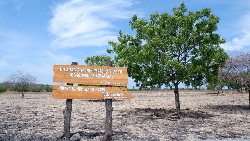 Taman nasional baluran sebagai contoh metode insitu