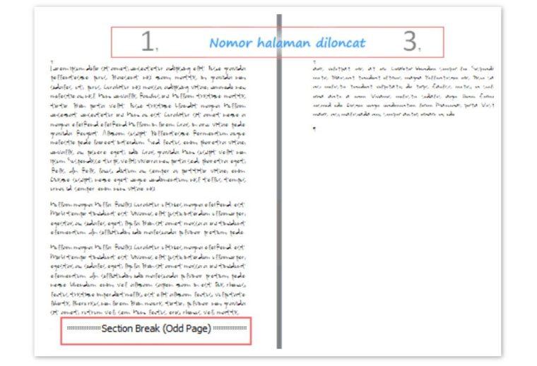 Cara ke-3 Menghapus Halaman pada Word Di Tengah dan Akhir Dokumen