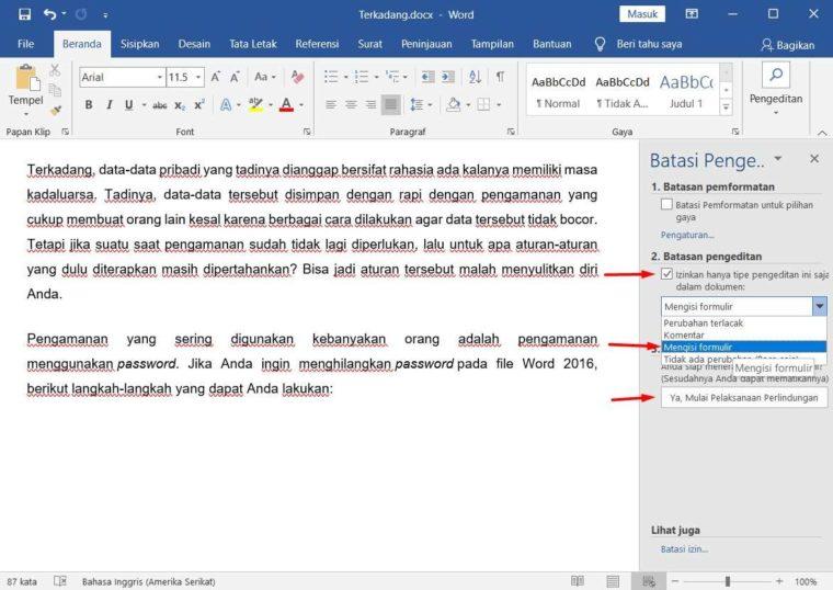Cara ke-3 Mengatur Agar Dokumen Tidak Bisa di Edit