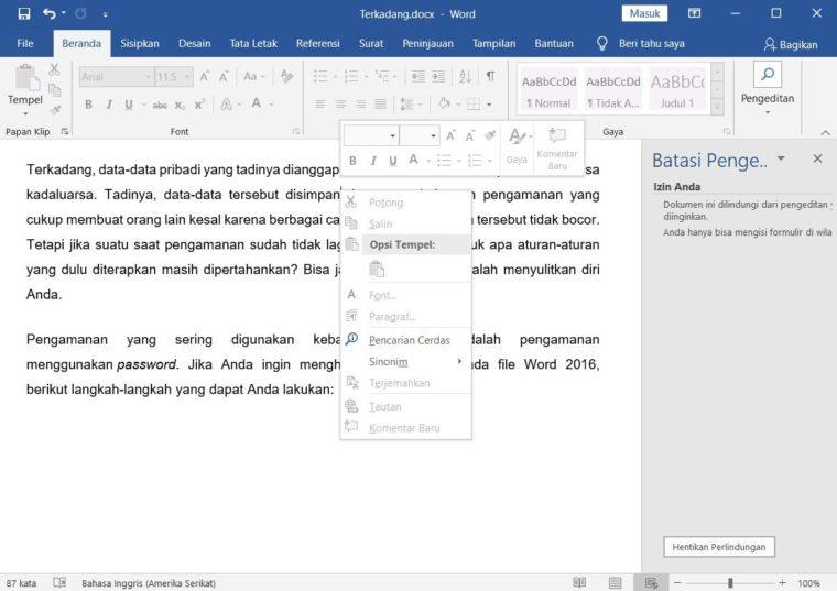 Cara ke-5 Mengatur Agar Dokumen Tidak Bisa di Edit