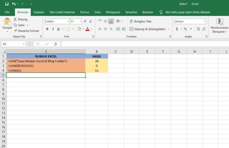 Contoh Penggunaan Rumus LEN Excel