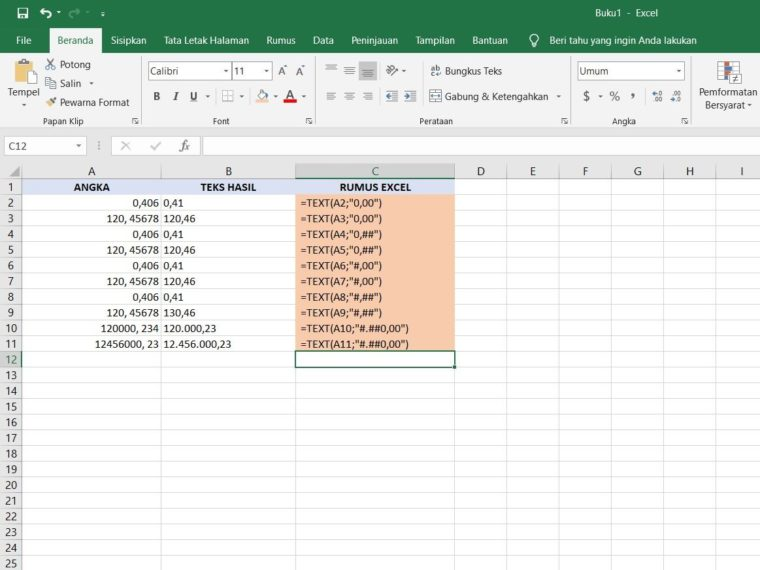 Fungsi TEXT buat Bilangan Angka Excel