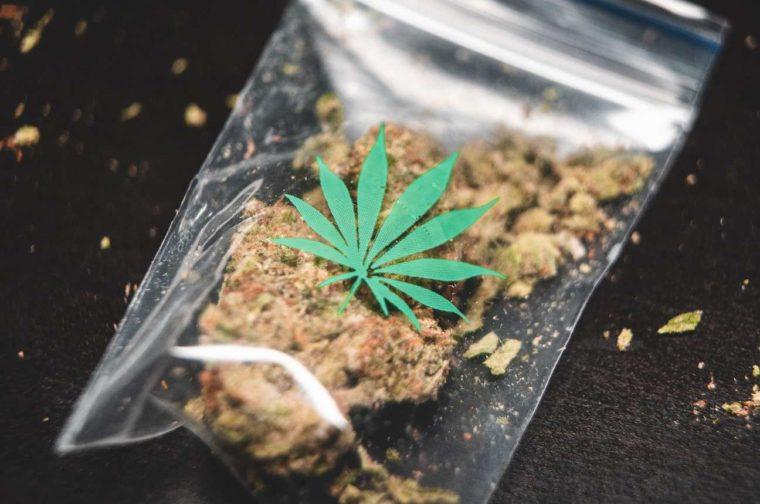 Contoh Teks Ceramah Tentang Narkoba