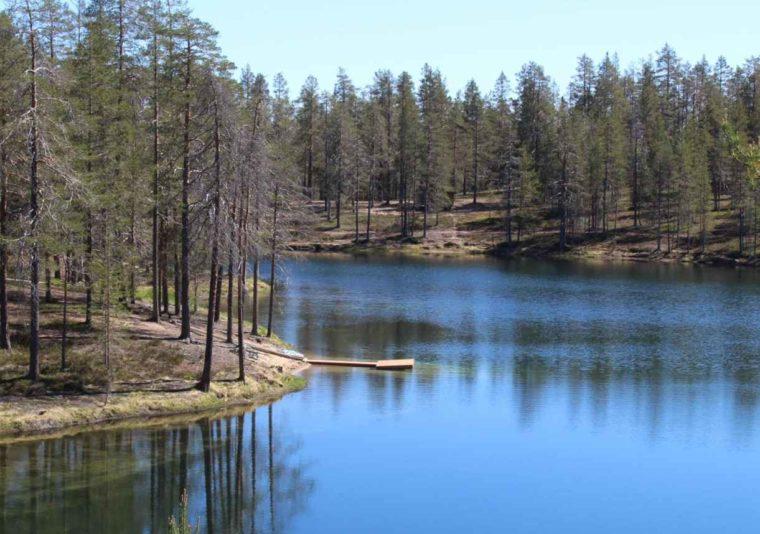 Gambar Thumbnail Ekosistem