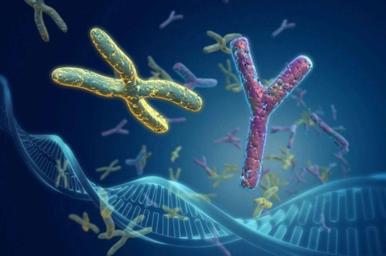 Kelainan Kromosom