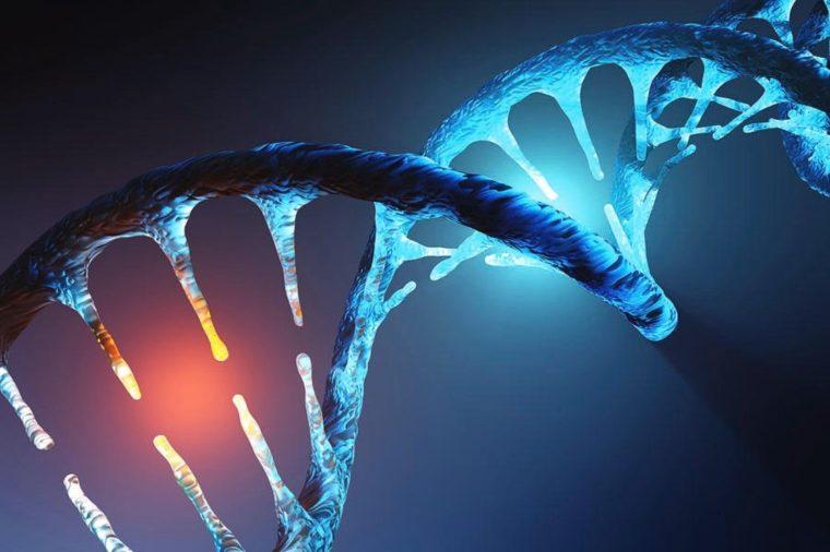 Komponen Penyusun Gen