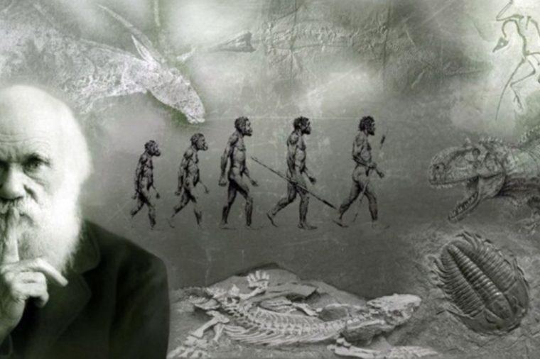 Mekanisme Evolusi