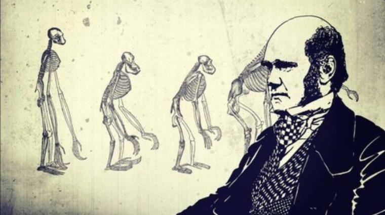 Pengertian Evolusi Menurut Para Ahli
