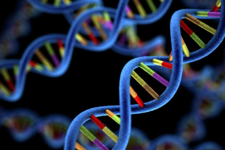 Pengertian Gen Menurut Para Ahli