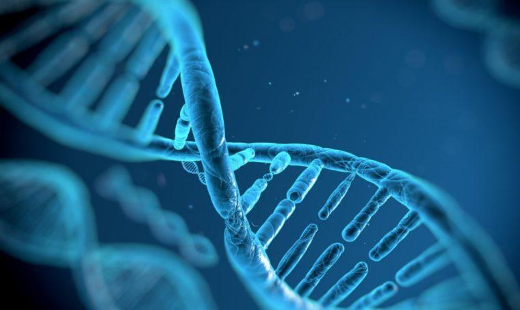 Sifat Gen