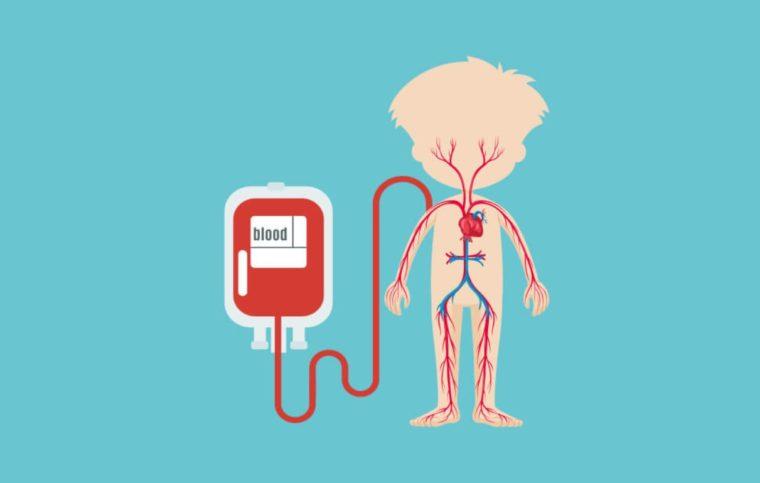 Teknologi Sistem Peredaran Darah