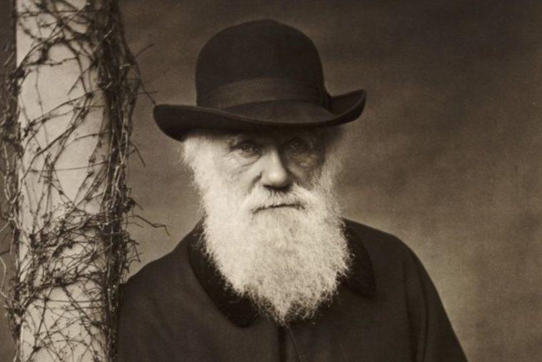 Teori Evolusi Menurut Charles Darwin
