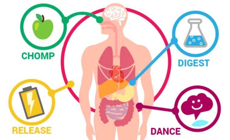 Tujuan Metabolisme