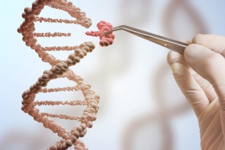 Apa Itu Mutasi Gen